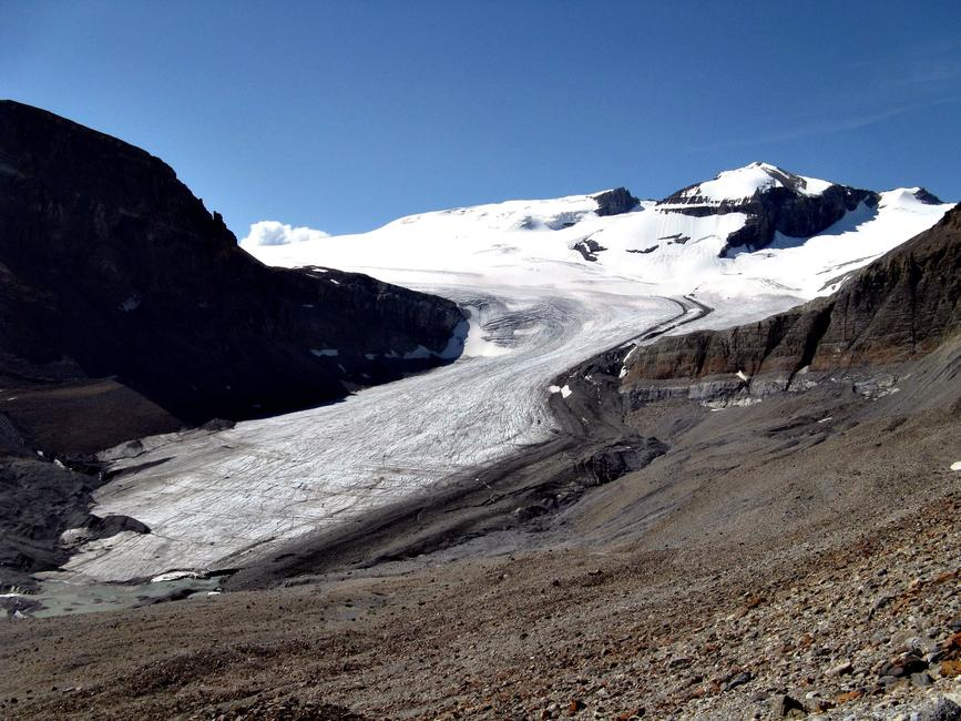 Peyto Glacier in August 2008 (taken by Eric Coulthard on 05/08/2008)